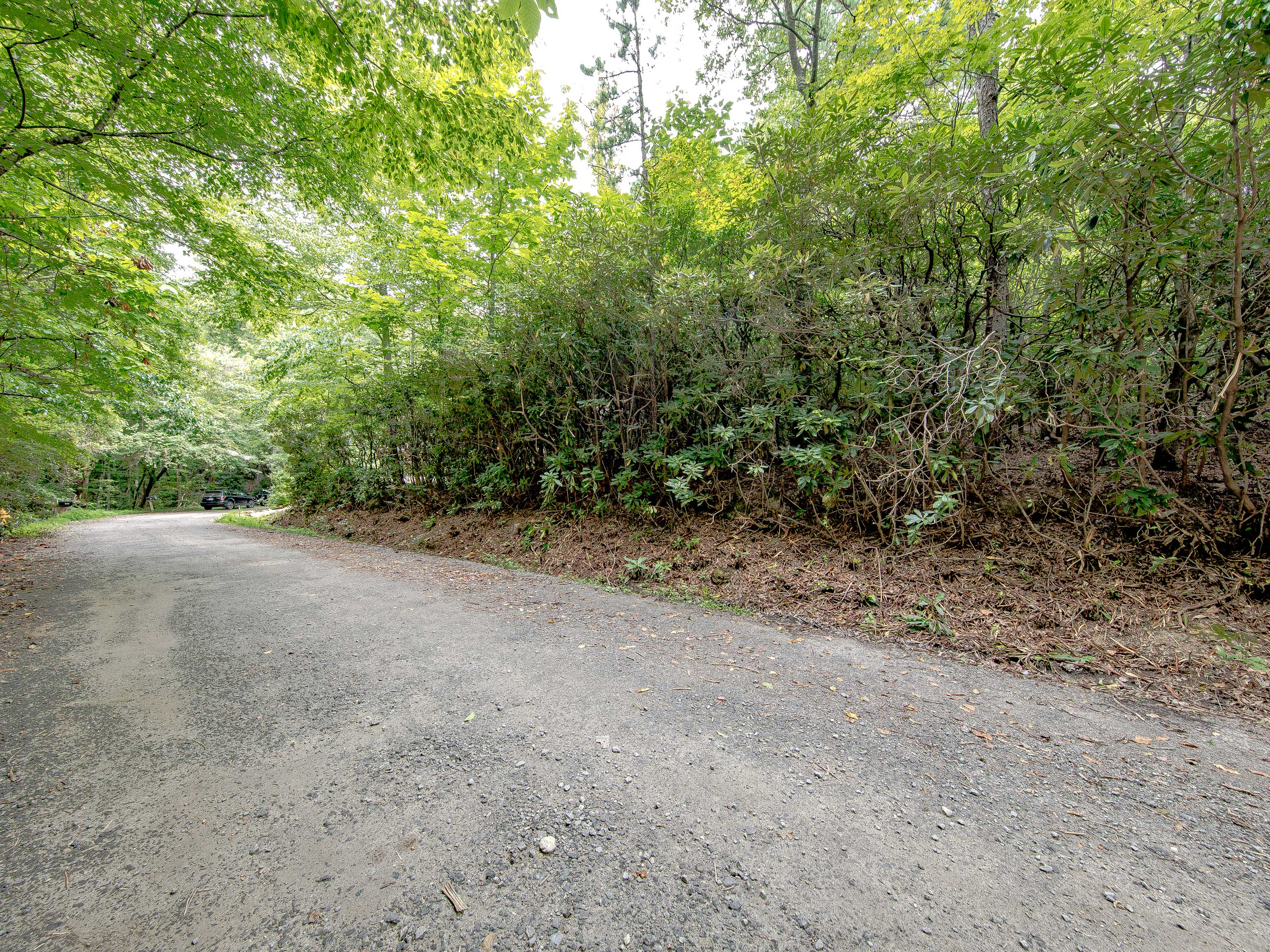 Buncombe County Lot