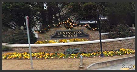 Lexington Woods