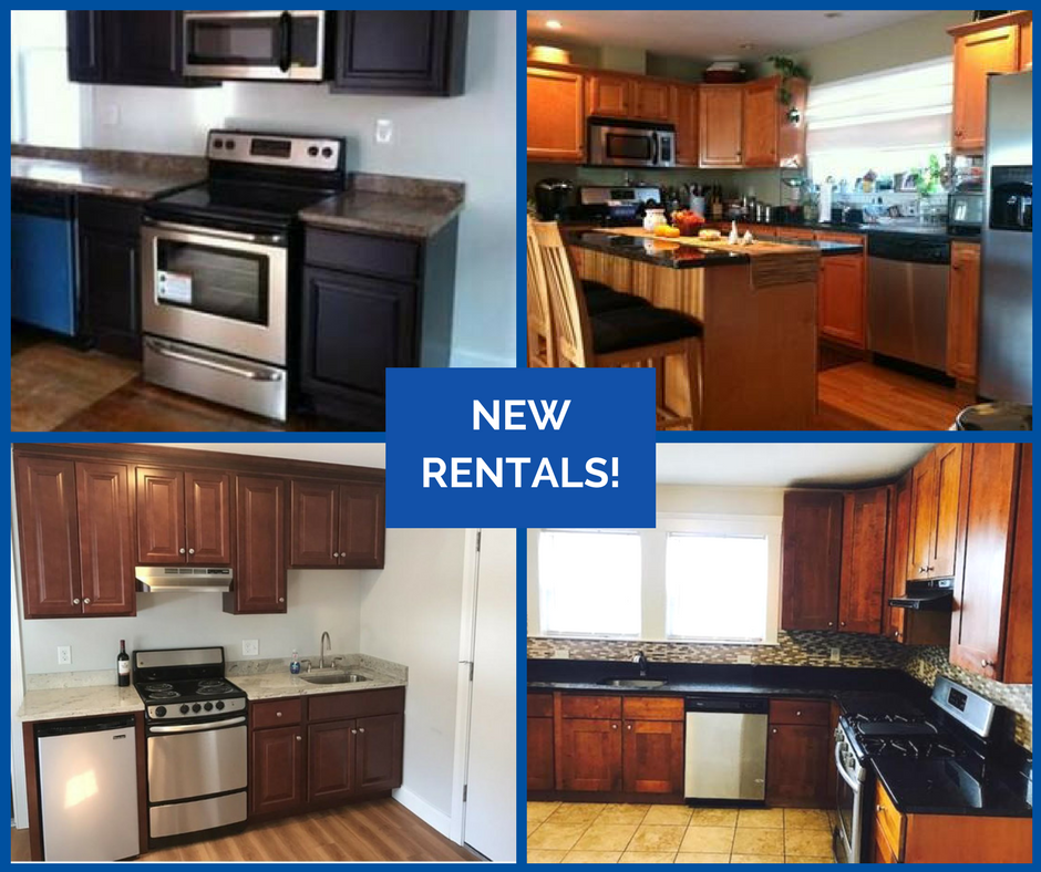 Don't Miss Out On These Beautiful Rentals!