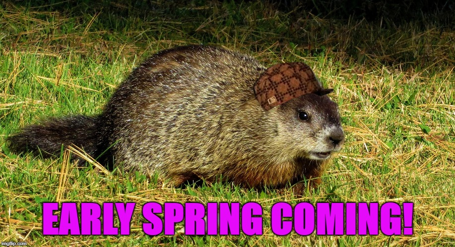Early Spring Predicted – Punxsutawney Phil Saw His Shadow