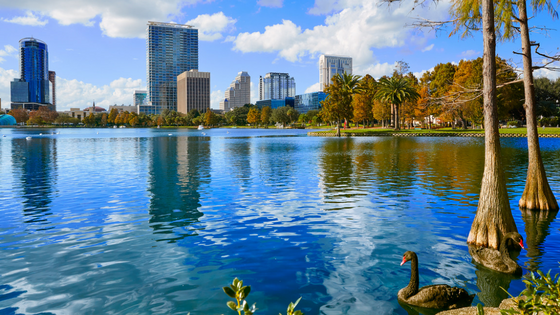 4 Reasons Why You Should Buy a Home in Orlando This Year