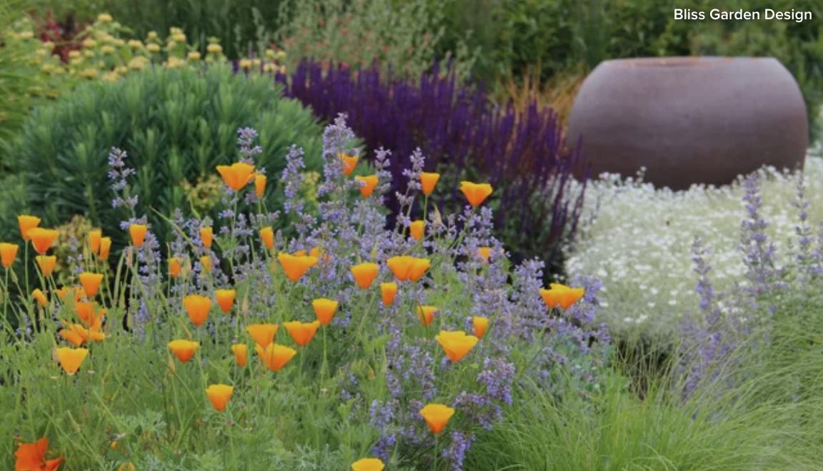 Designing a Garden?