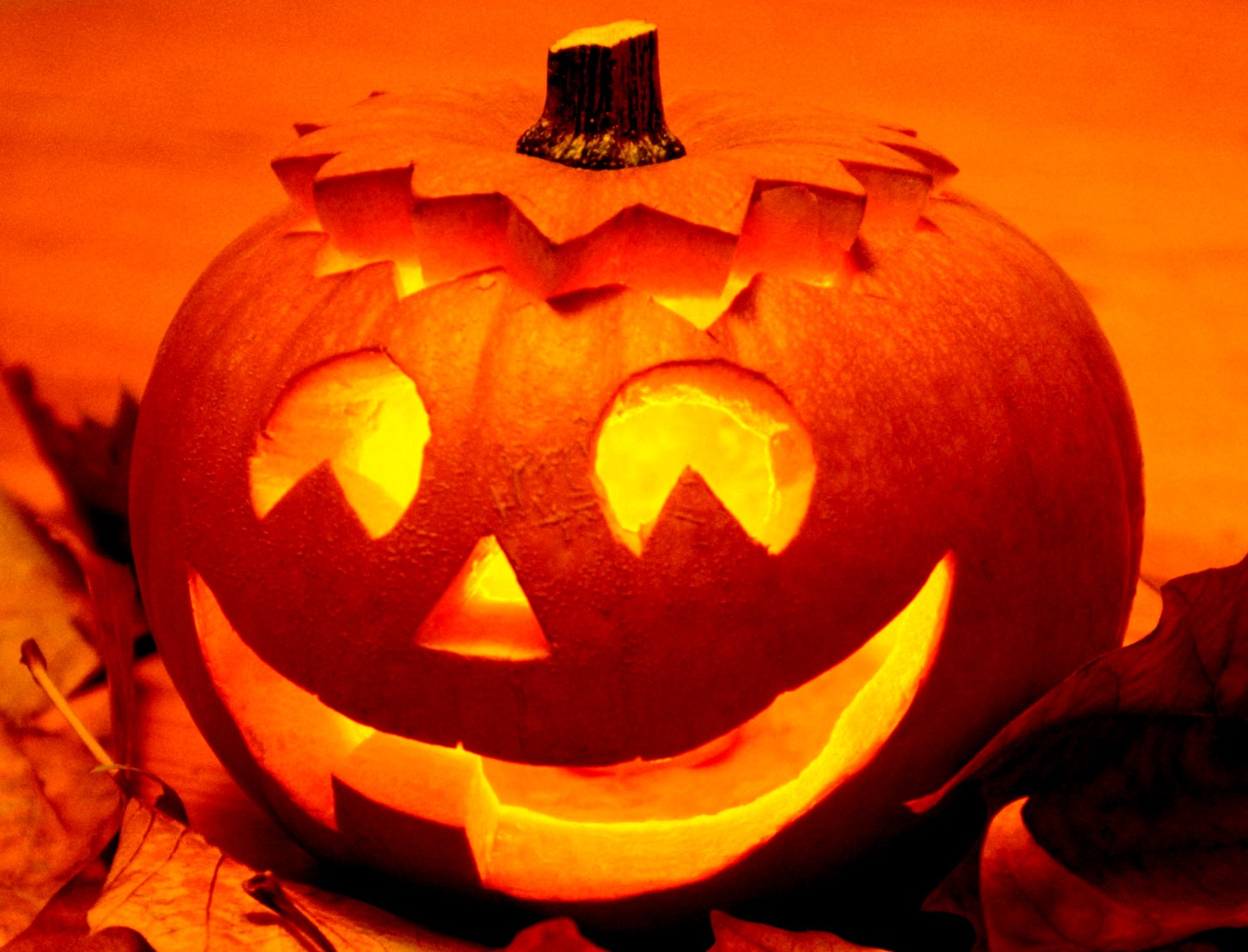 Celebrating Halloween in the Greater Madison Area