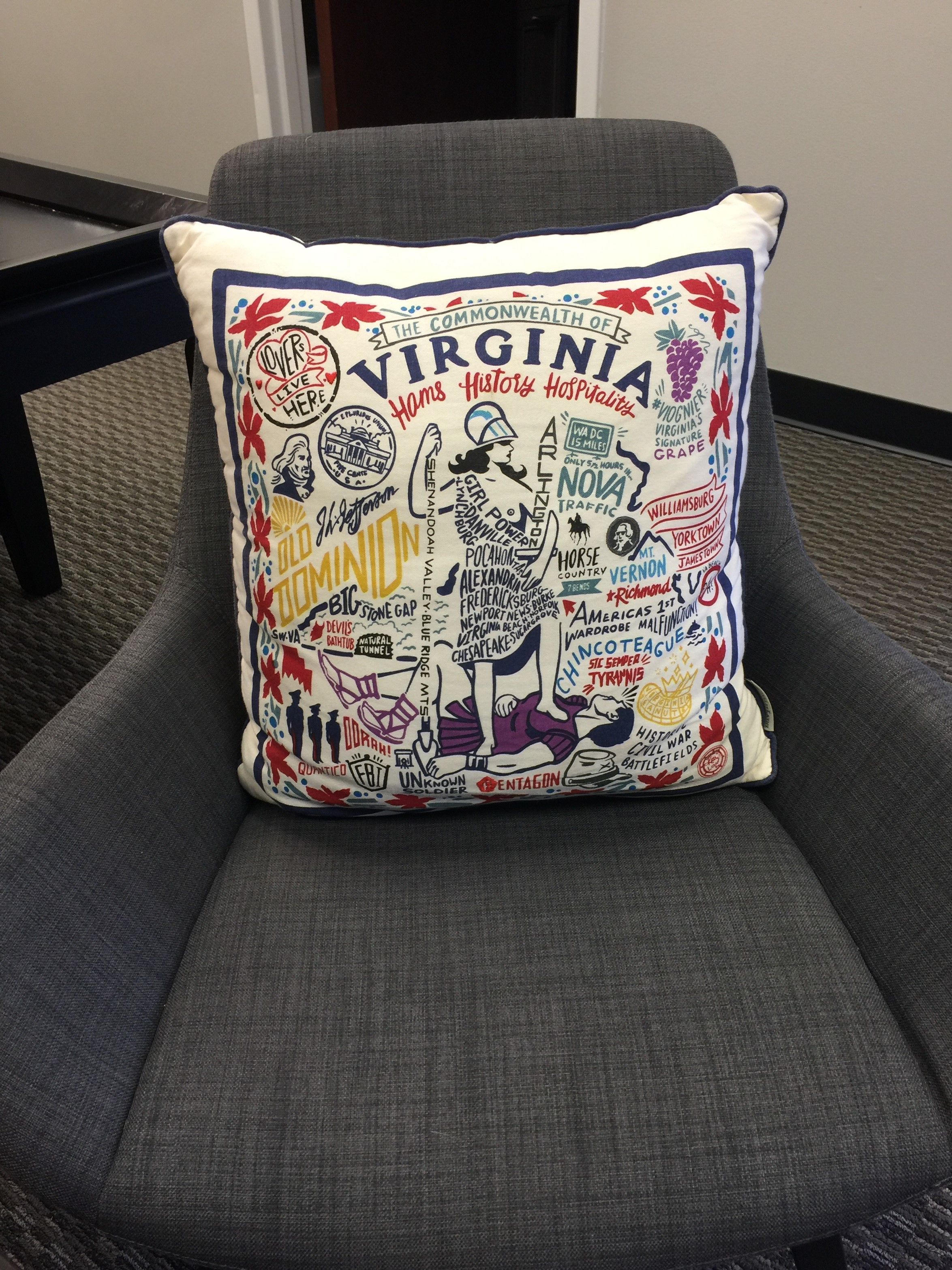 RVA office pillow
