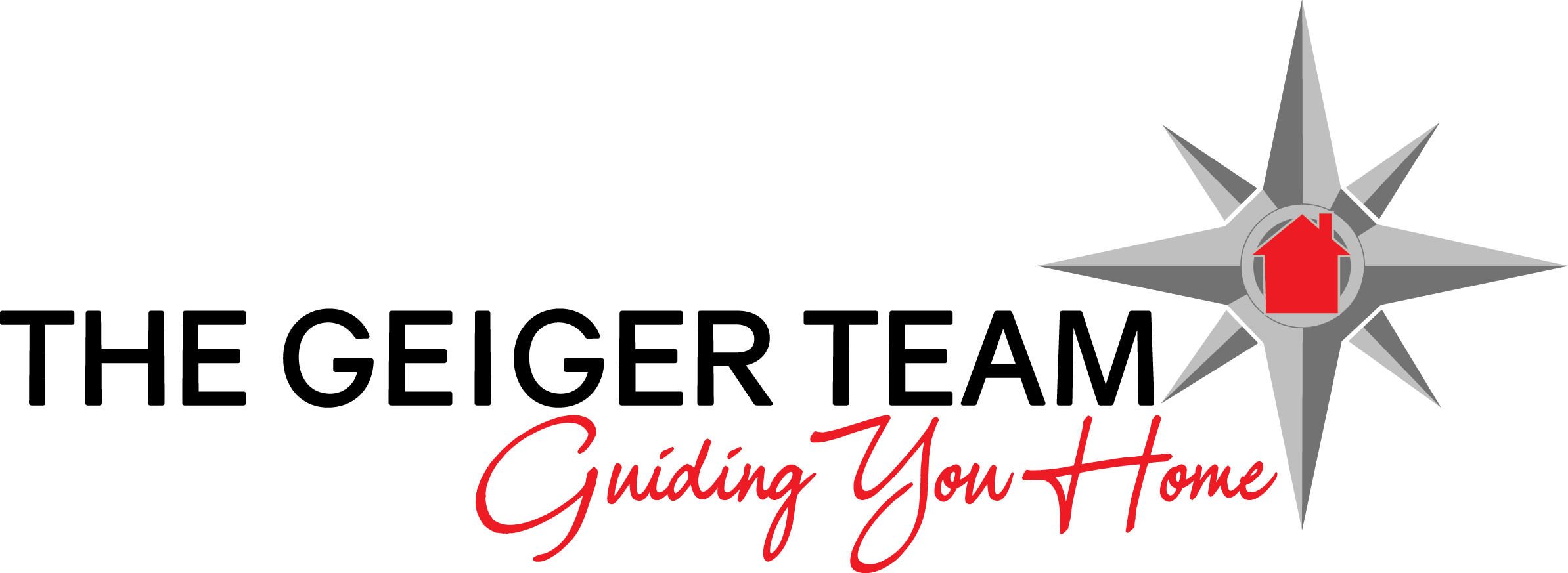 The Geiger Team
