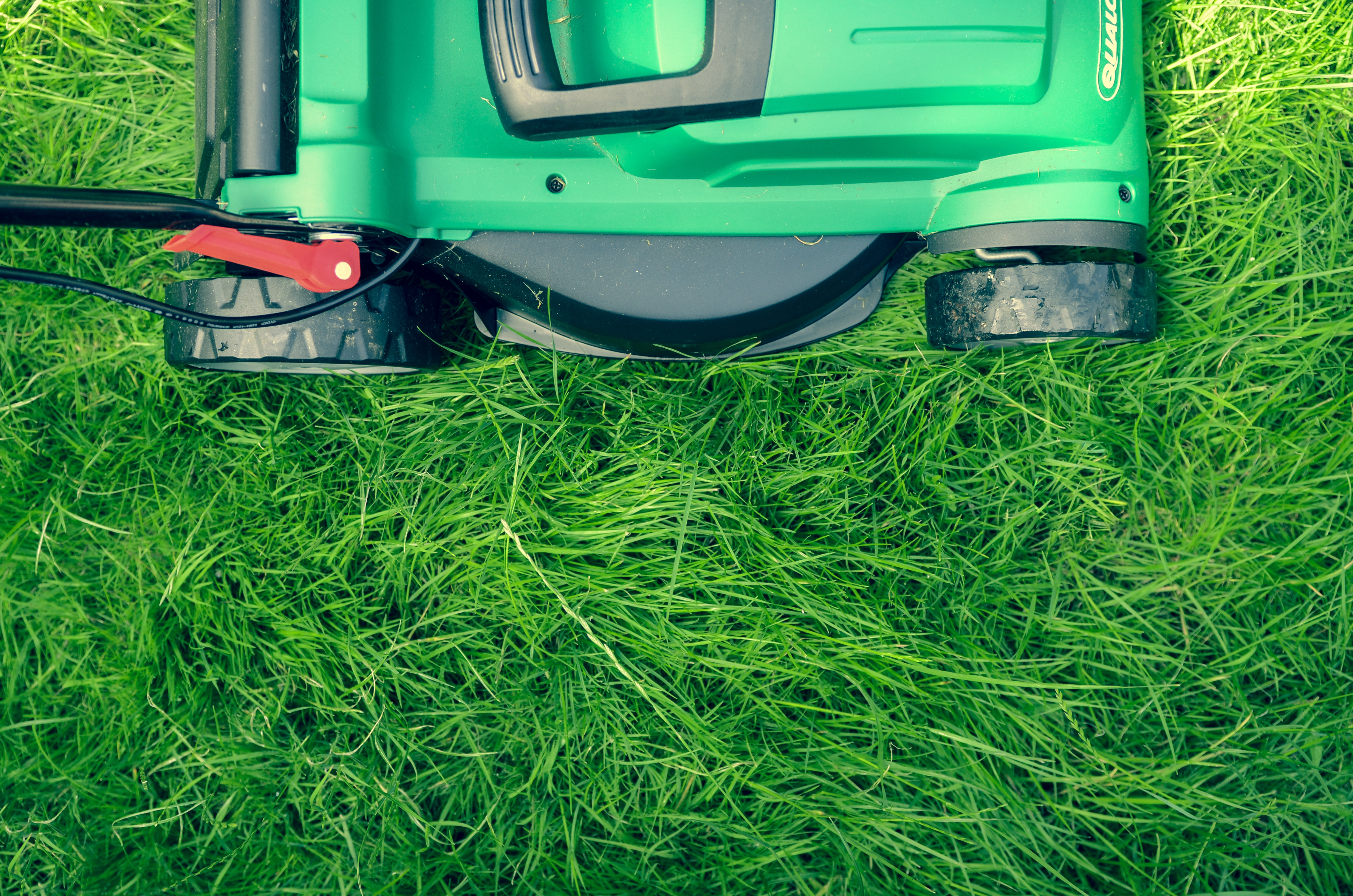 6 Tips for Summer Lawn Care