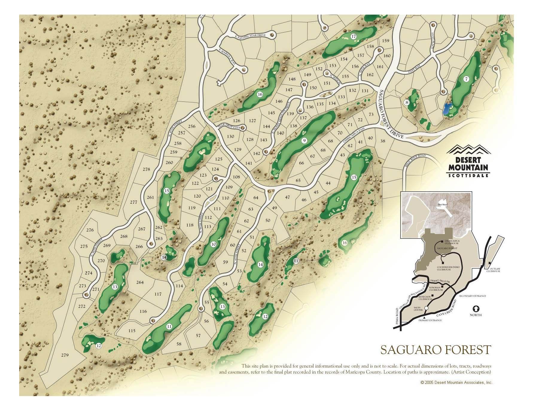 Saguaro Forest Map