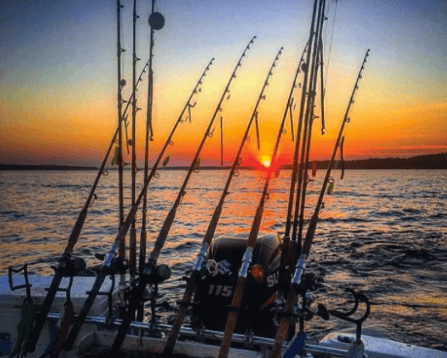 Spring Time – Prime Time for Catfish