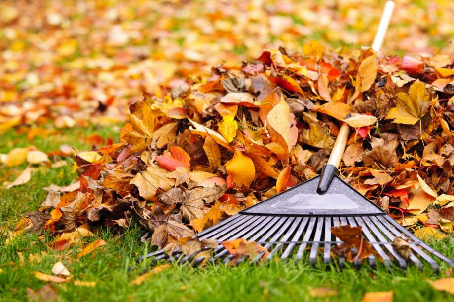FALL HOME MAINTENANCE TIPS FOR HOMEOWNERS