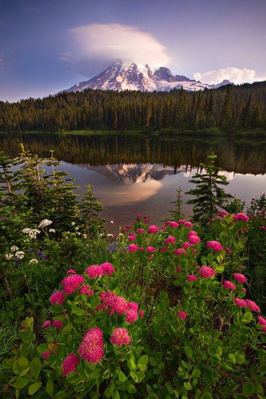 Washington State a beautiful place to live! Enjoy the Lifestyle!