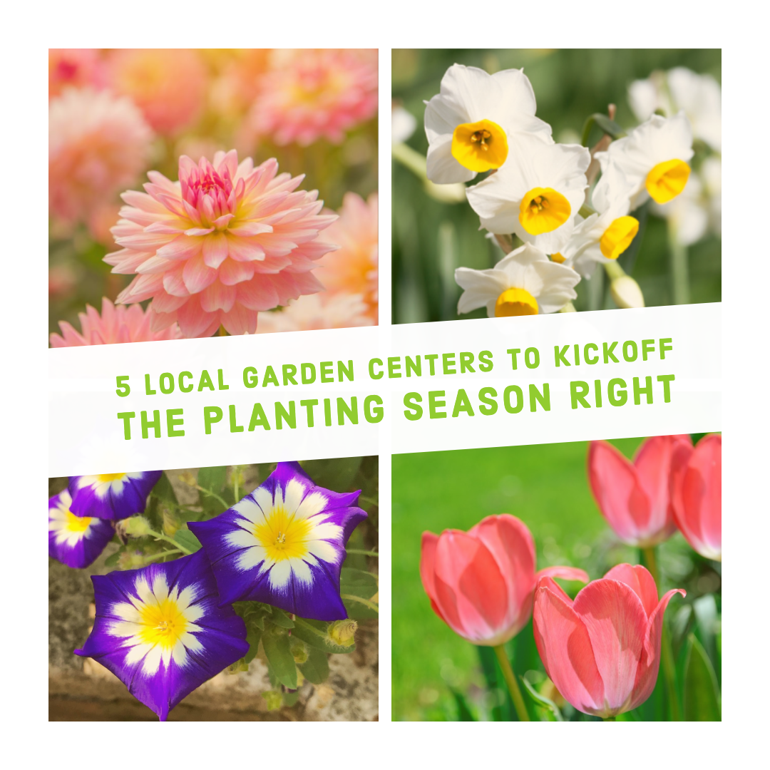 5 Local Garden Centers to Kickoff the Planting Season