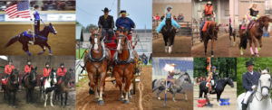 2019 Michigan Horse Expo