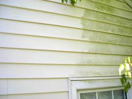 Vinyl Siding is durable but needs to be cleaned