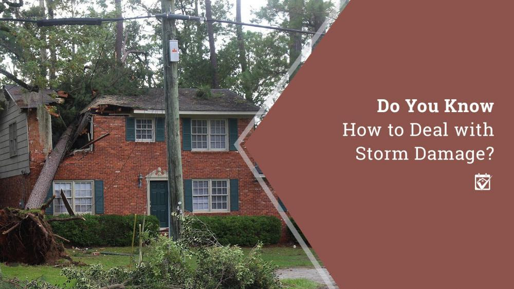 Do You Know How to Deal with Storm Damage?